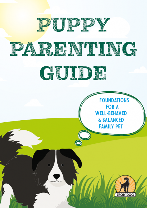 Puppy Parenting Guide